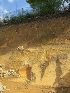 鹿沼土採掘現場